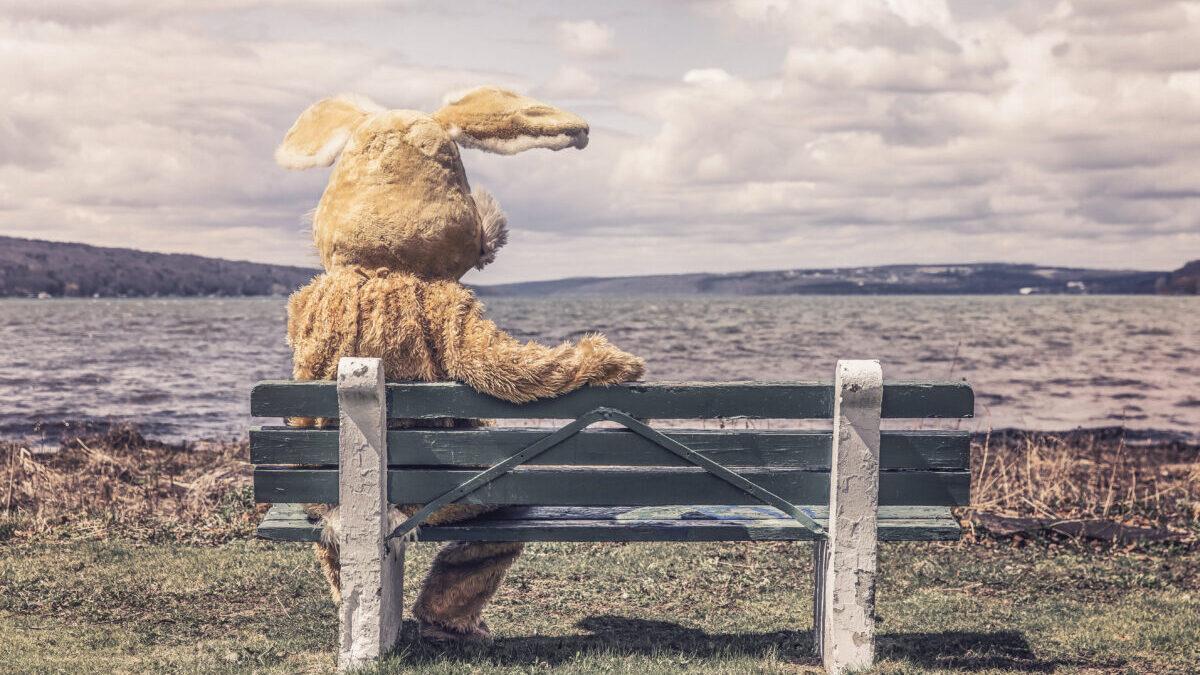 ベンチに座るウサギ