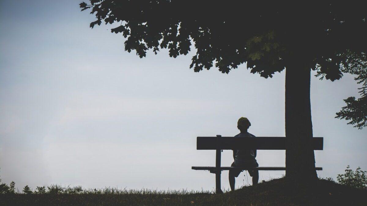 木の下のベンチに座る人